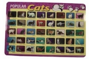 Learning Placemats-Cats